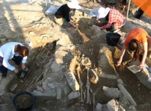 arheolozi 2010